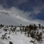 Southeast snowfields avalanche, Saturday, 3-29-2014